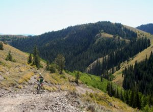 Wasatch Crest Trail