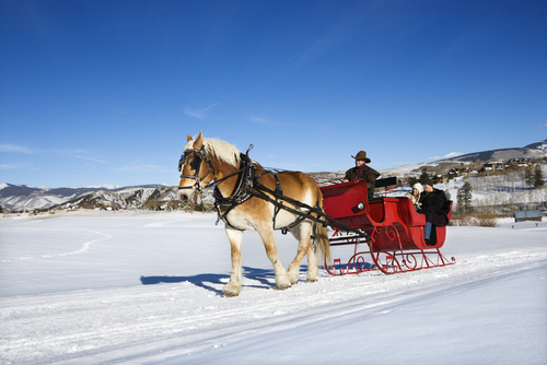 Snuggle Up During A Sleigh Ride